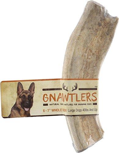 Premium Split Elk Antlers For Dogs Naturally Shed Elk